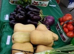 Shelburne Farmers' Market back for 2016